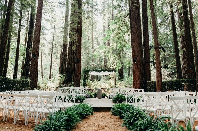 wedding ceremony site in a redwood forest