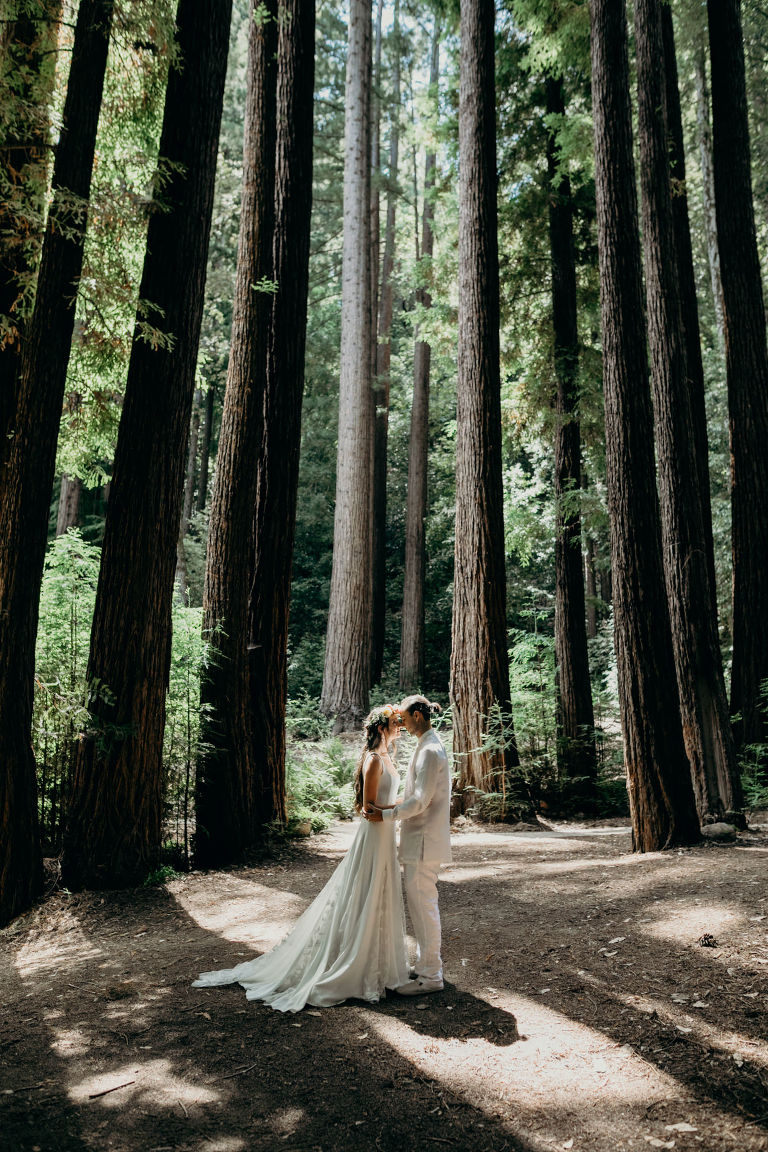afternoon wedding ceremony in the redwoods of Ben Lomond, California