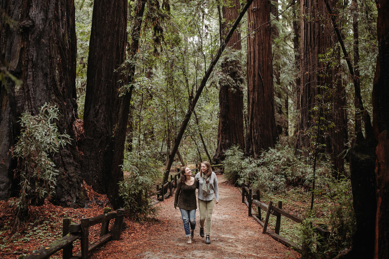 Henry Cowell Redwoods Engagement