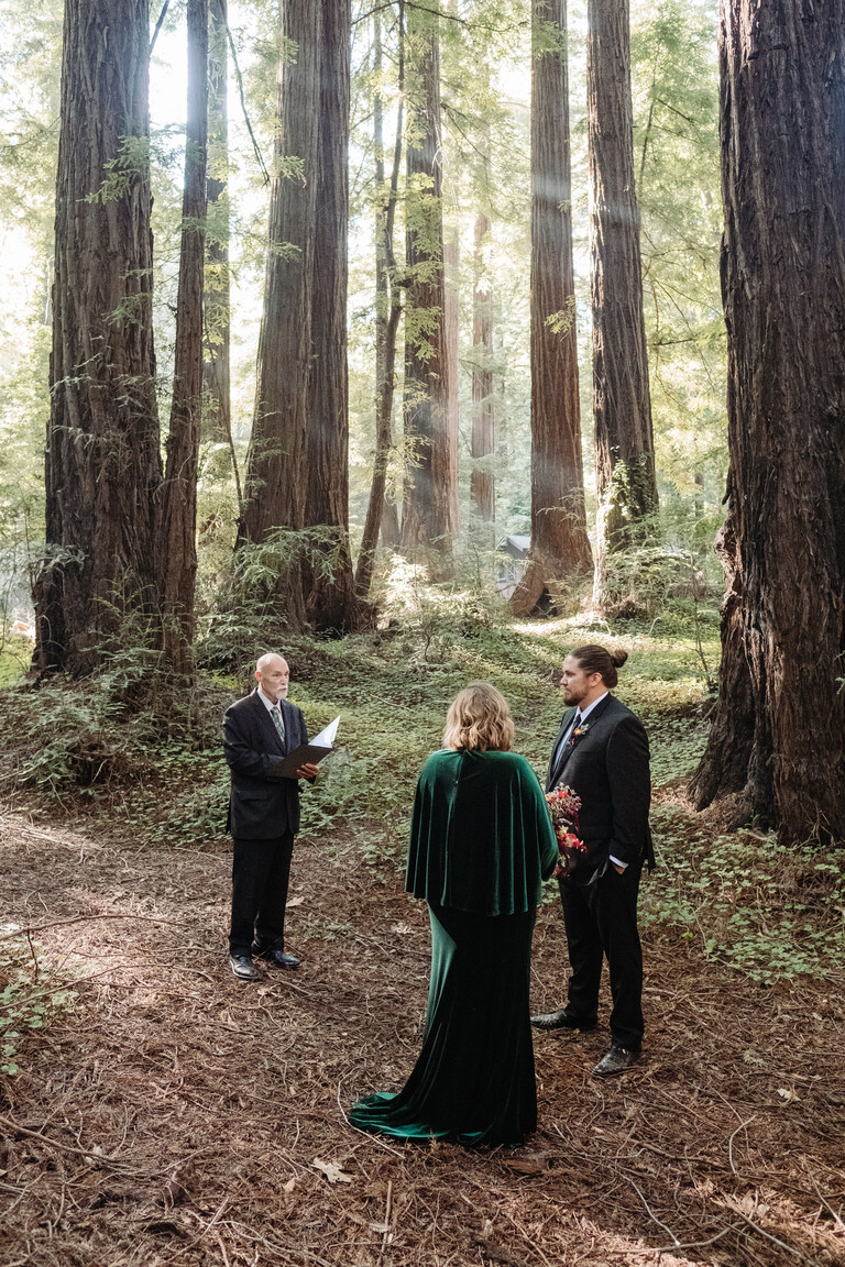 an elopement ceremony in the best redwood forest wedding venue in big sur
