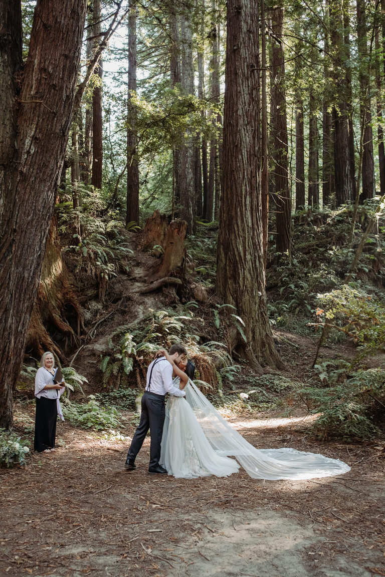 California Redwood Forest Elopement